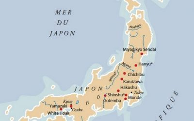 carte-whisky-japon